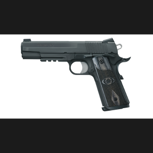 http://www.targetgroup.gr/wp-content/uploads/2013/01/SIG-1911-Blackwater-300x300.png