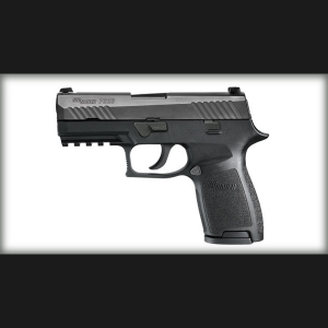 http://www.targetgroup.gr/wp-content/uploads/2014/01/P320-Carry-Nitron-detail-L-300x300.png